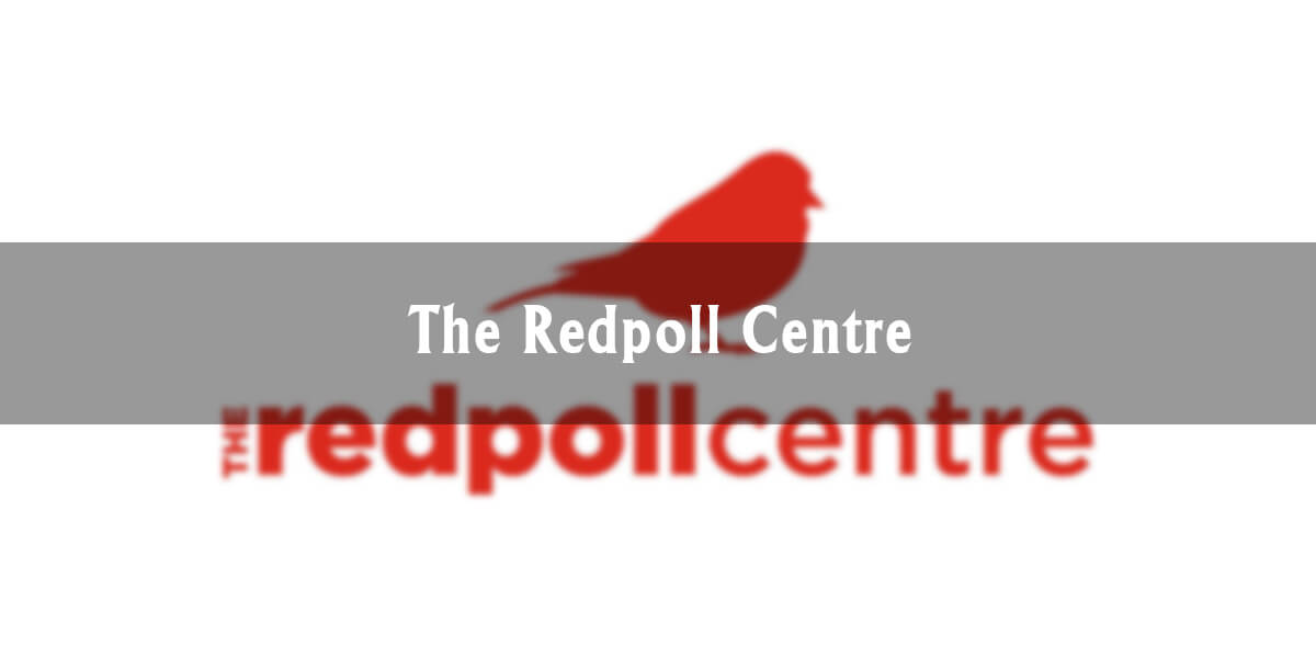 Downtown Highlights: The Redpoll Centre
